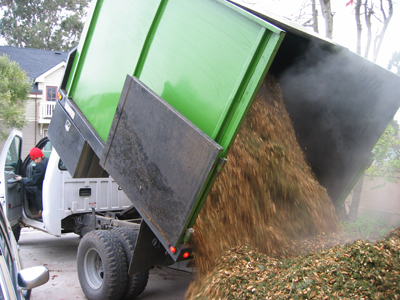 A truck is dumping a load of wood chips for use as mulch.