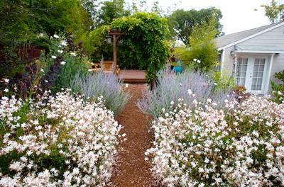 John's Garden photo 1