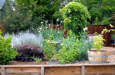 John's Garden photo 3